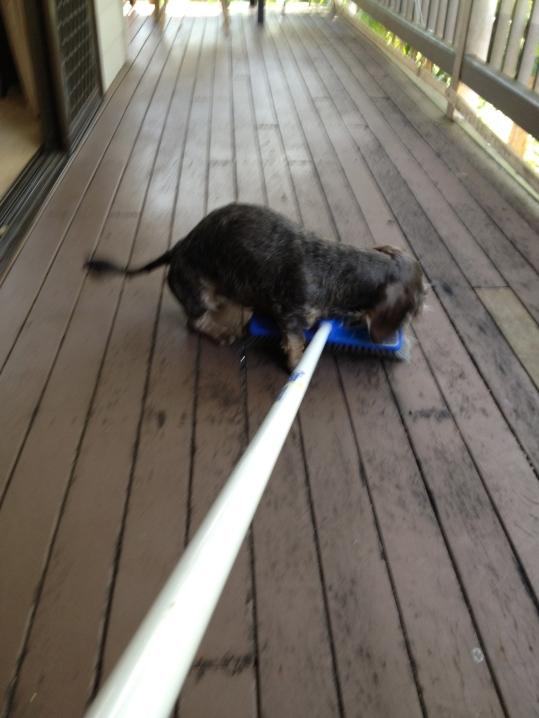 I love you broom, I really love you...
