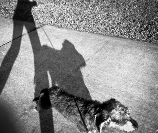'Walk faster Mum'